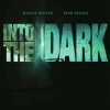 into-the-dark