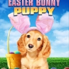 an-easter-bunny-puppy
