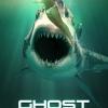 ghost-shark