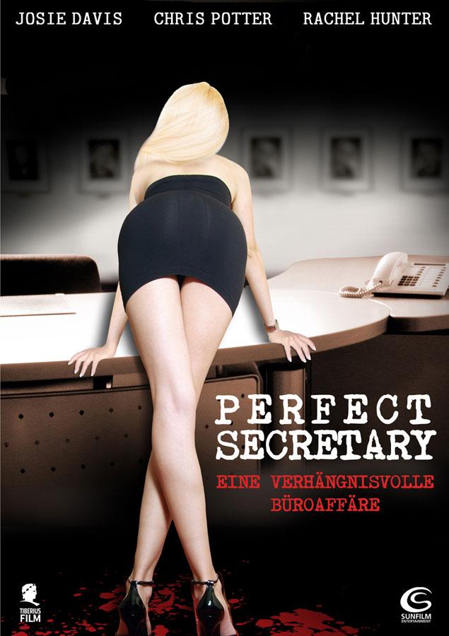 Perfect secretary 3