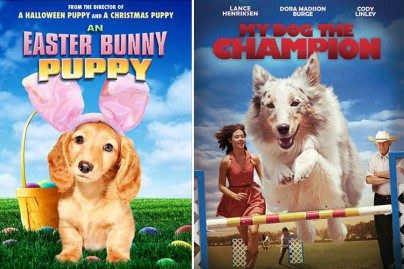"""An Easter Bunny Puppy"" und ""My Dog The Champion"""