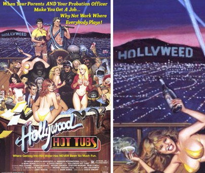 "Filmplakat zu ""Hollywood Hot Tubs"""